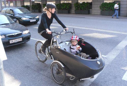 Cool kiddie cargo