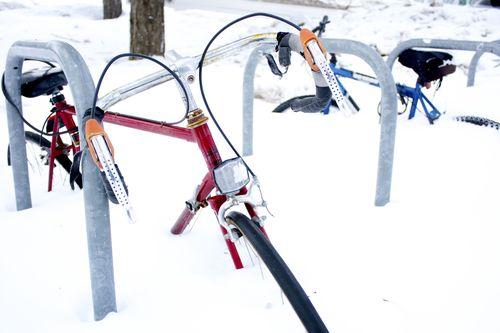Bicicle6